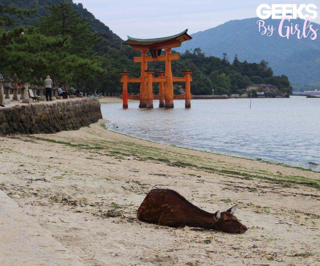 Un cerf se reposant à Miyajima - Voyage au Japon