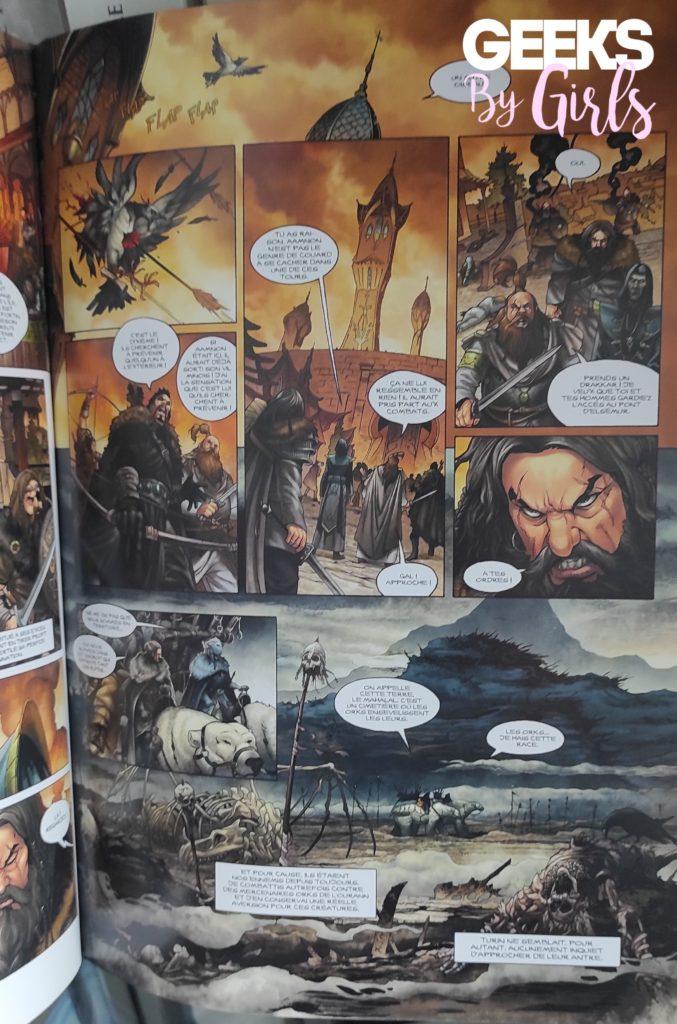 Elfes est une série de BD fantastiques. Nous suivons l'histoire de cinq peuples d'Elfes dans un seul et unique univers : les terres d'Arran.